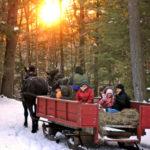winter sleigh rides