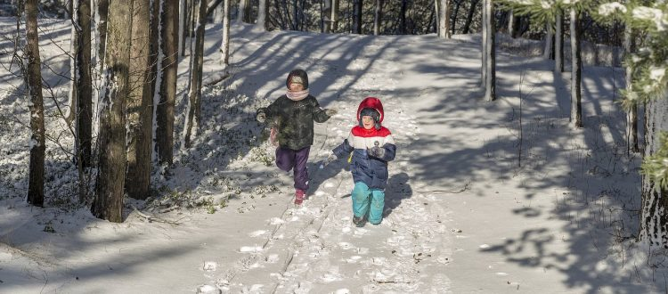 kids walking in the woods in the snow